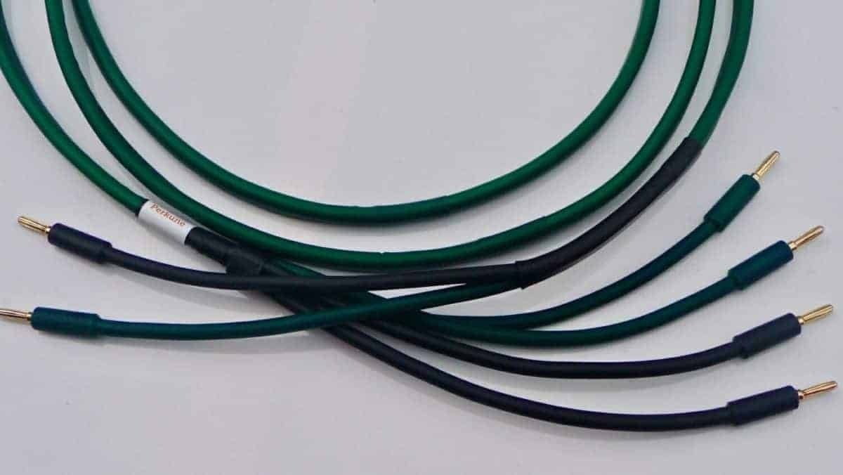 Bi-wired cable