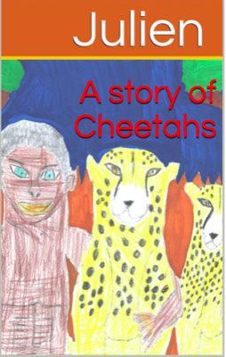 A story of Cheetahs
