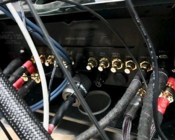 Gryphon amplifier rear